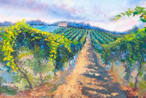 A landscape depicting a vineyard